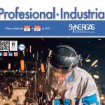 FINALIZADO – Synergas: Campaña Profesional